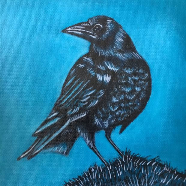 Crow- May 2018
